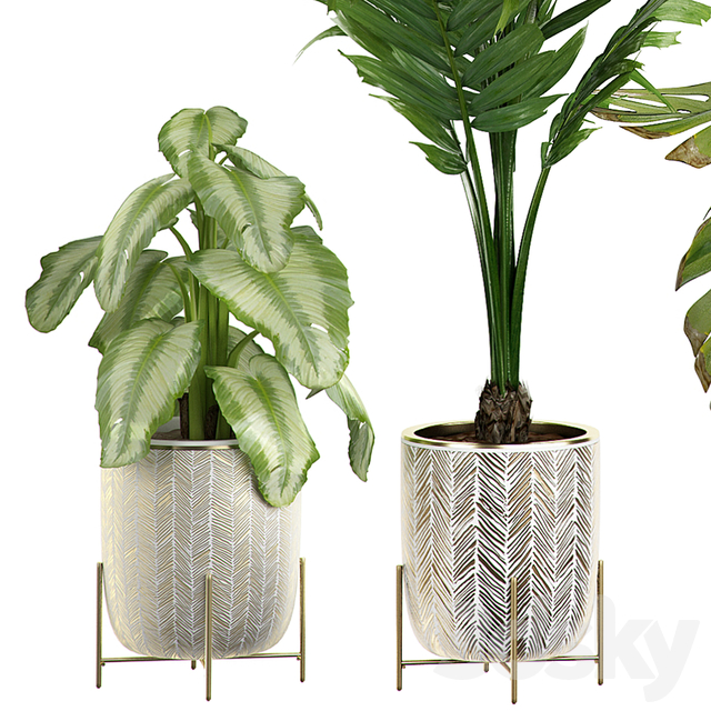 INTERIOR FLOWER PLANT PACK 4