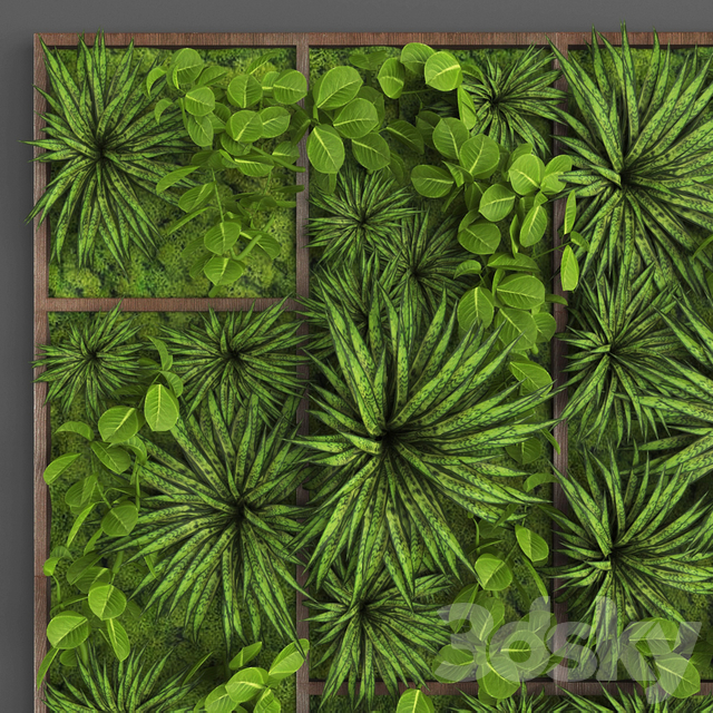 Vertical gardening 016
