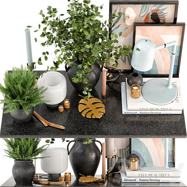 Decorative Set 07 Plants set