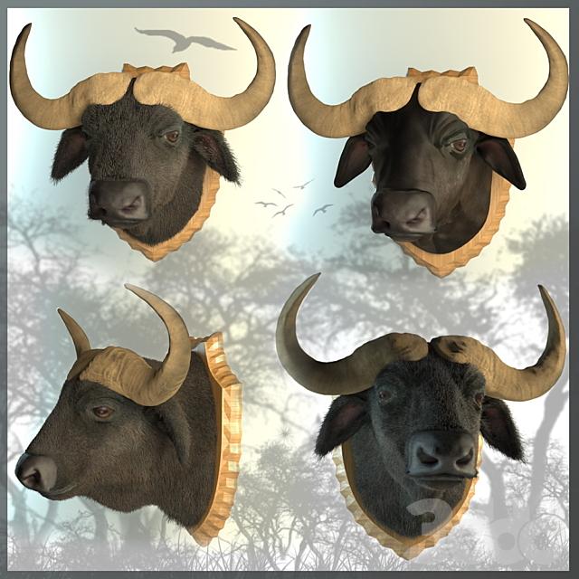 Чучело буйвол
