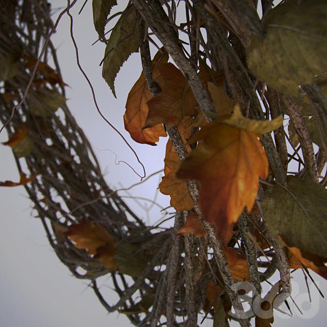 autumn_dec