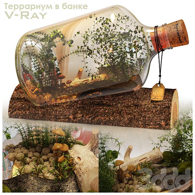 Террариум в бутылке