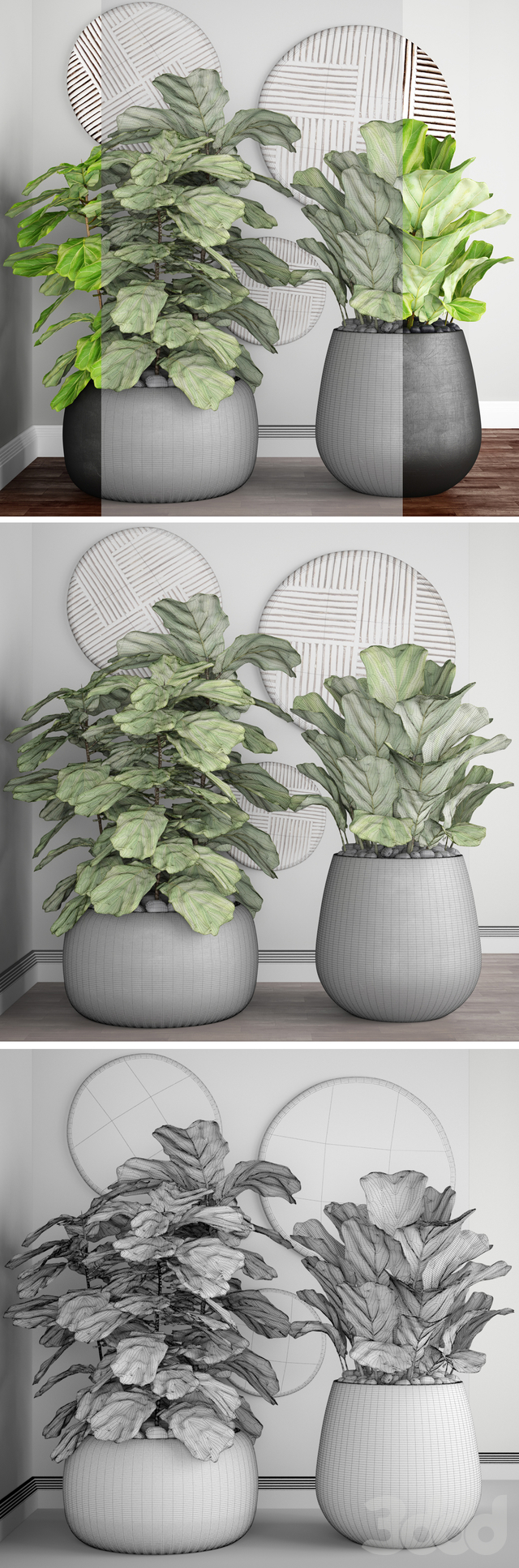 Коллекция растений в горшках 24