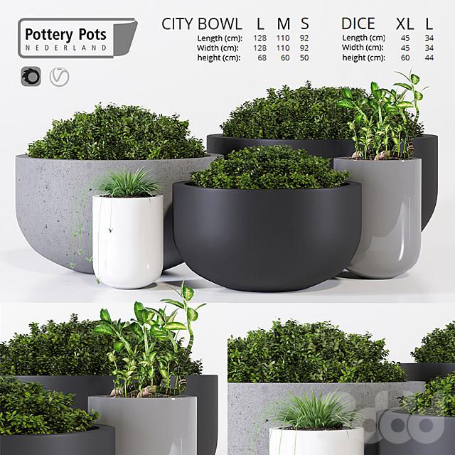 Potterypots three