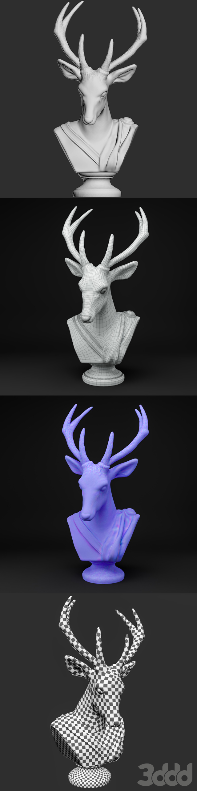 Animal Bust - Noble