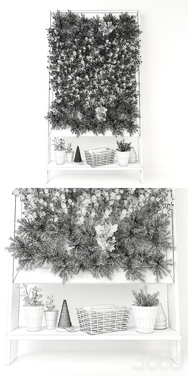 Кухонные травы # 1