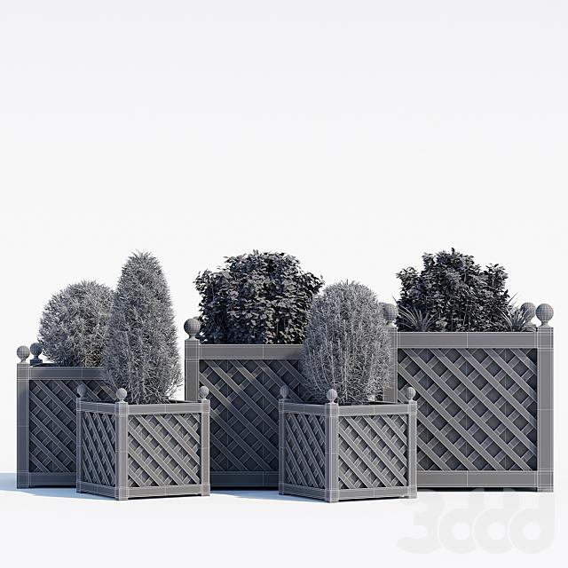 Treillage planters