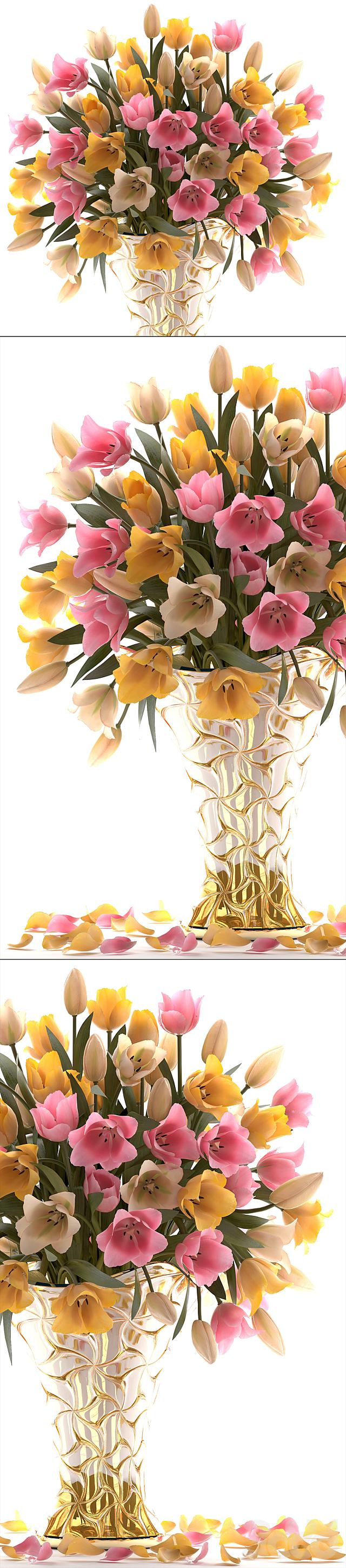 Коллекция цветов 23. Тюльпаны.