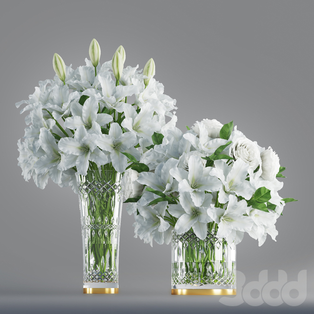 White lily in crystal vase