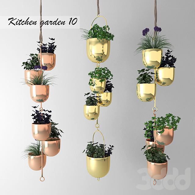 Декоративный огород # 10