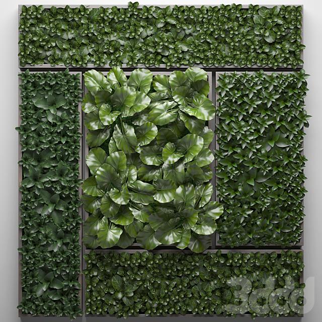 Vertical garden 24.