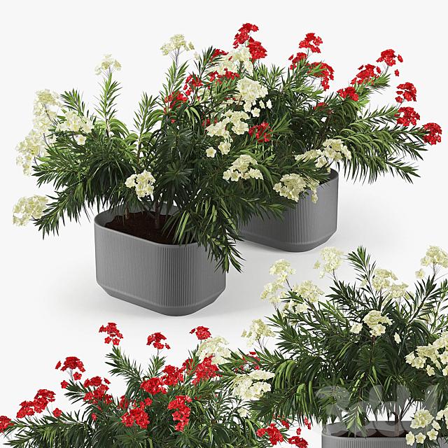 Urbilis Mod Planter 02