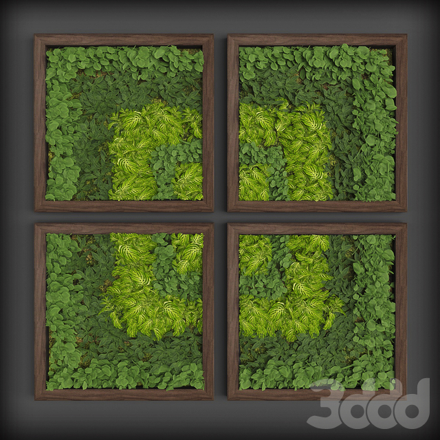 Vertical gardening 08