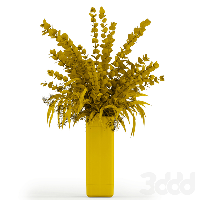 Eucalyptus in tall vase