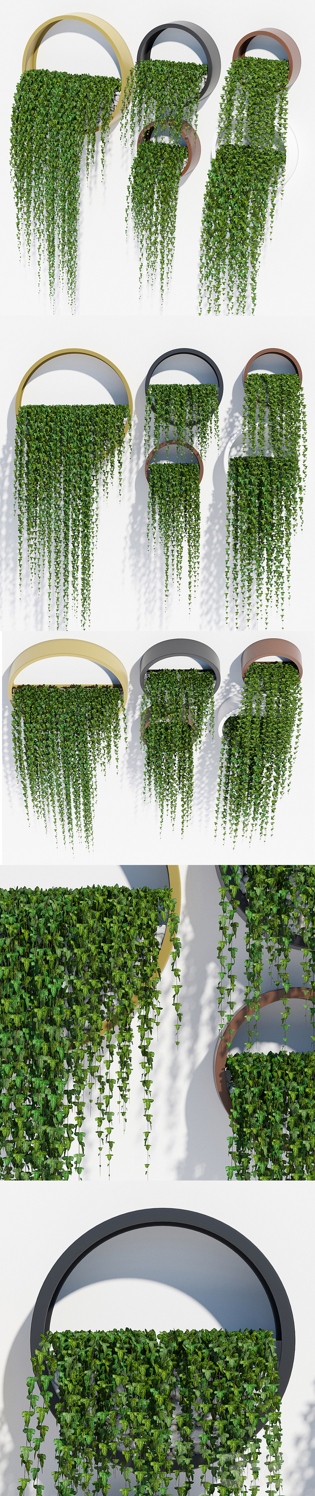 Wall planters ivy