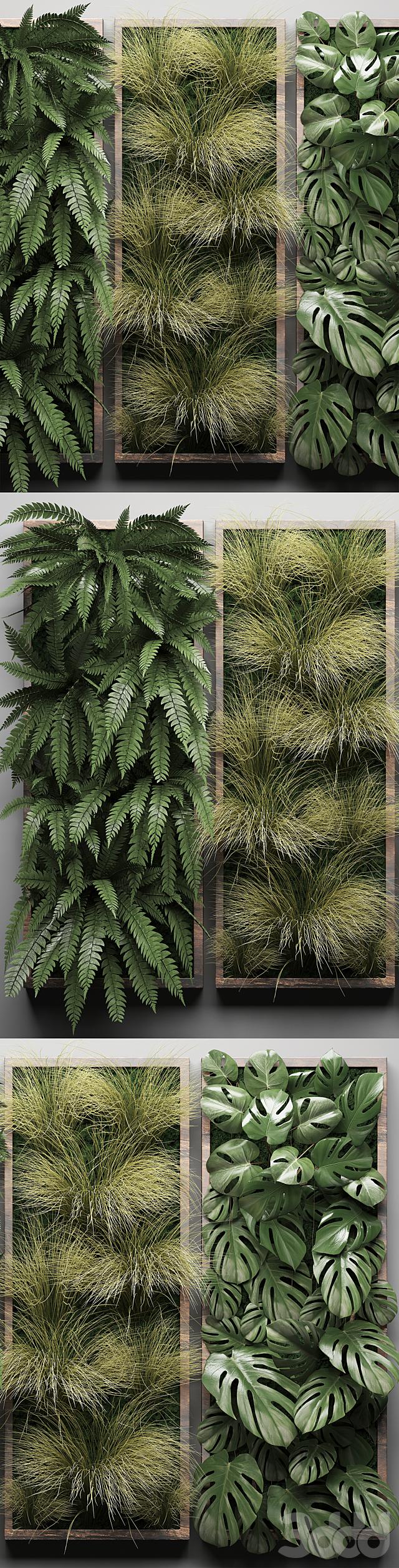 Vertical garden 29.