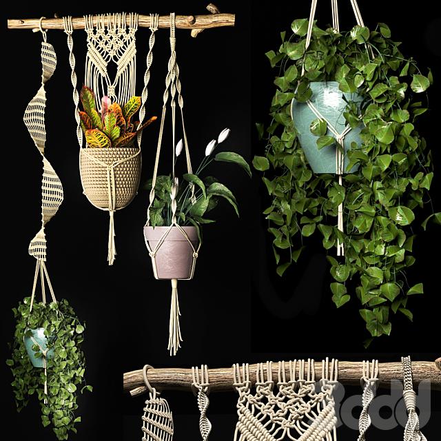Декоративный набор подвесных кашпо 2