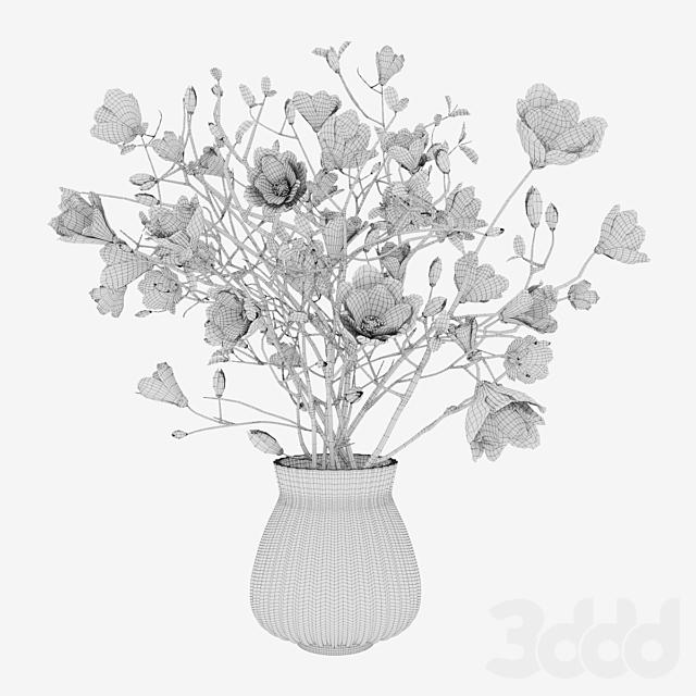 Plant 11