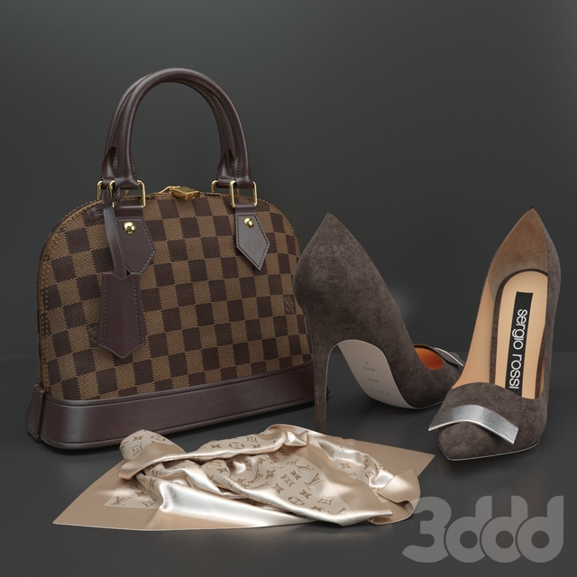 Elegant Bag and Shoes
