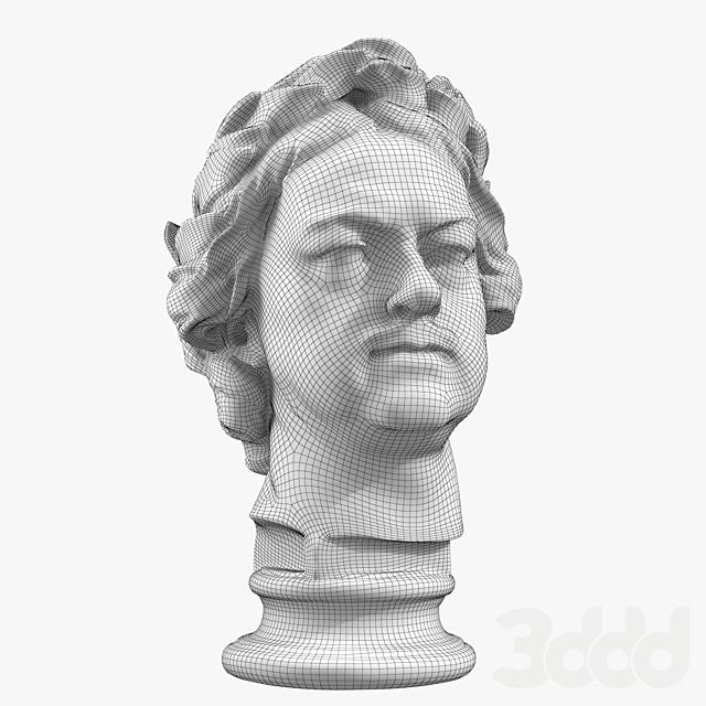 Пётр Первый модель головы