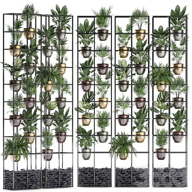 Вертикальное озеленение. 27