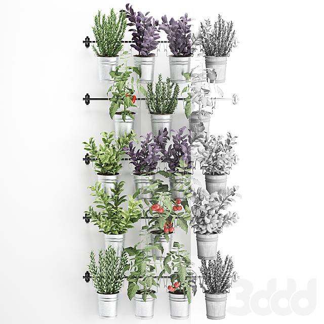 Вертикальное озеленение. 33