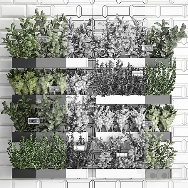 Вертикальное озеленение. 38