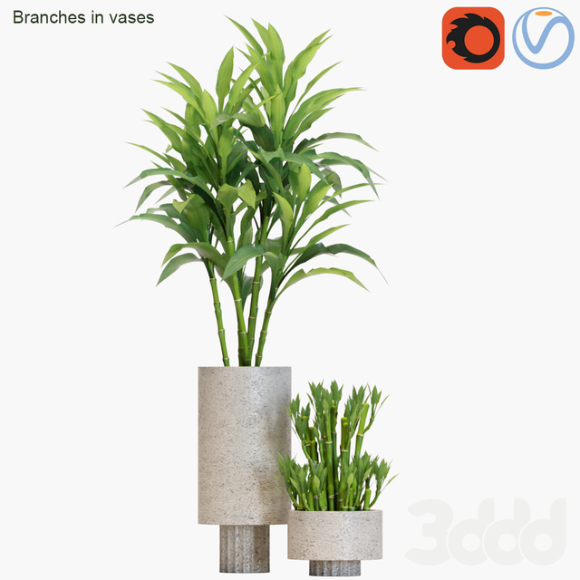 Branches in vases #23