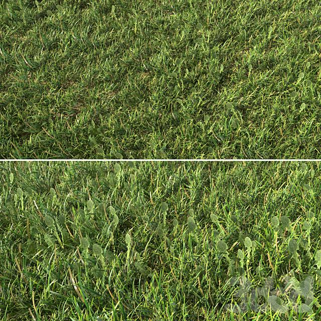 Grass_Landscaping_01