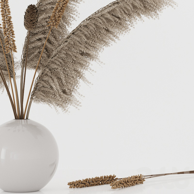 Bouquet with pampas grass and dry plants