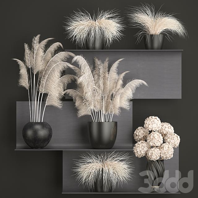 Букет сухих цветов 91. White.