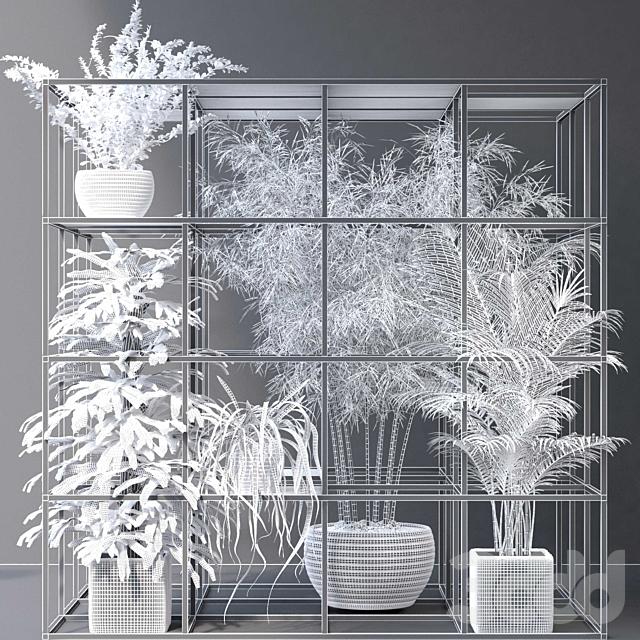 JC Wall Grid Plants Pot 8