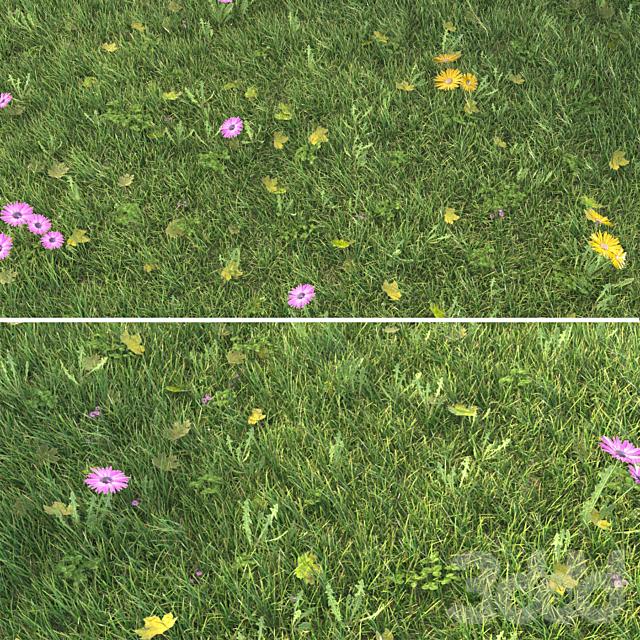 Grass_Landscaping_03