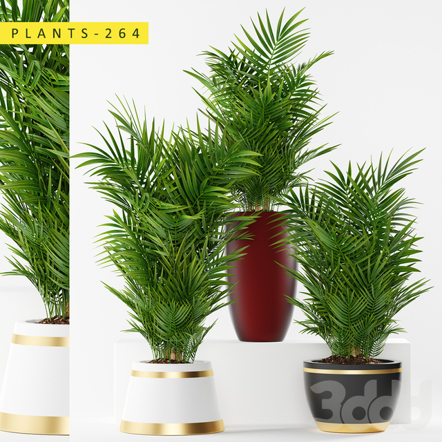 plants 264