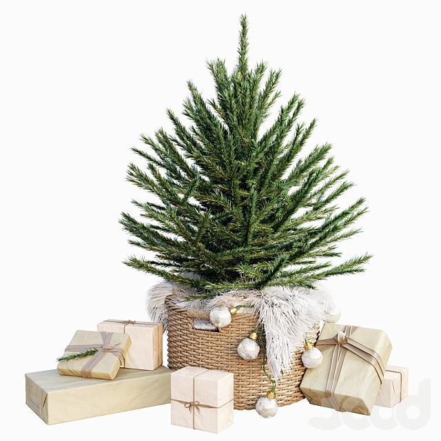 AVE Christmas Tree