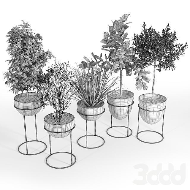 Stand Planter