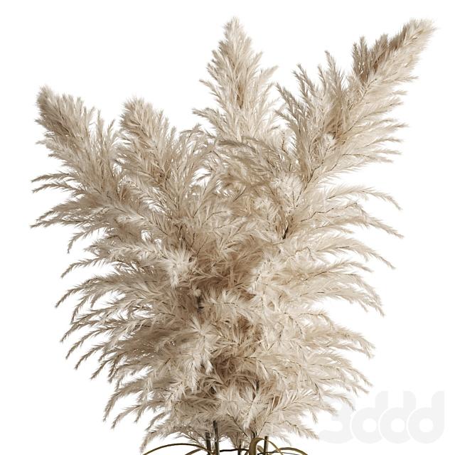 Кортадерия(Пампасная трава) в вазе