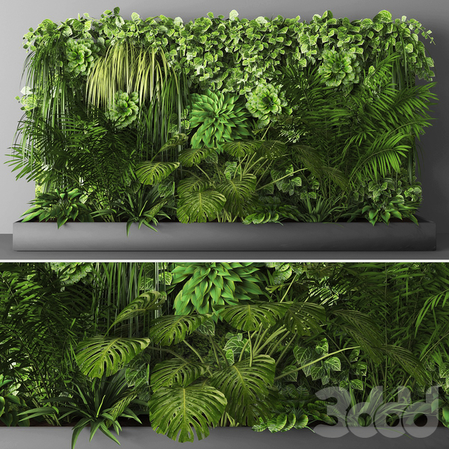 Vertical garden 031