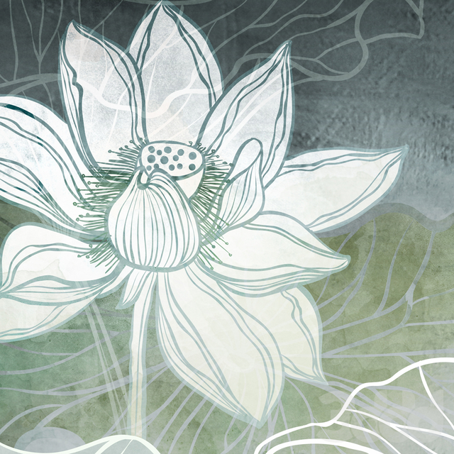 Creativille | Wallpapers | Water lilies 10201