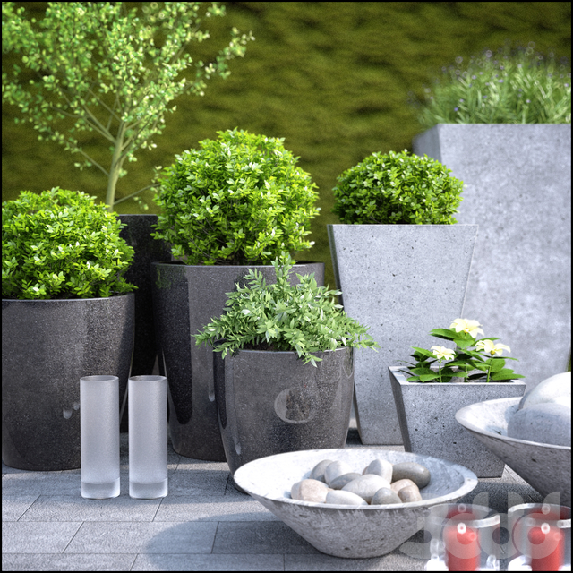 planter group