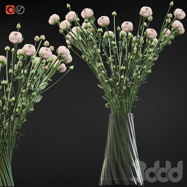 Twist bouquet of small beige shrub roses in a vase with water