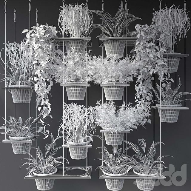 JC Wall Plant Pots 8