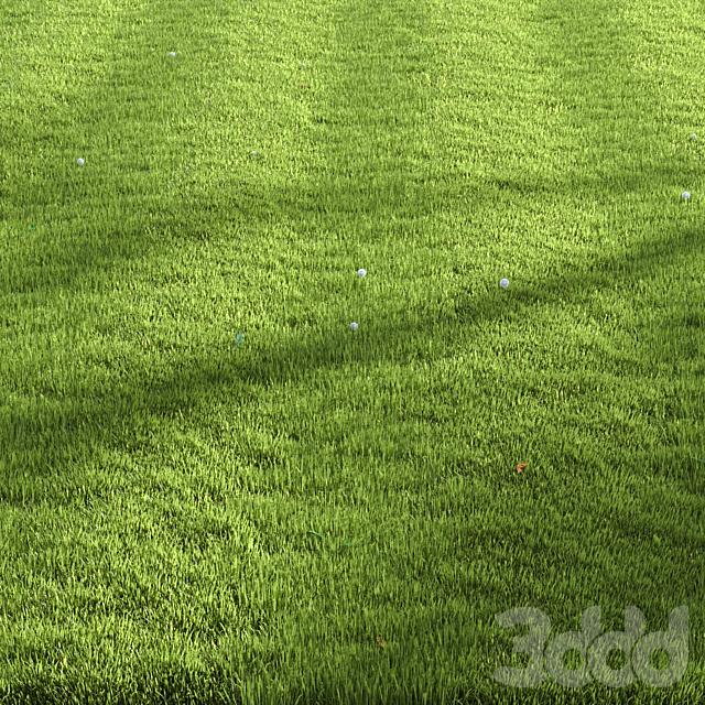 Ryegrass lawn_set01