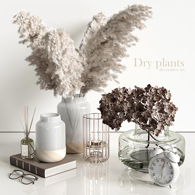 Decorative set with dry plants 4
