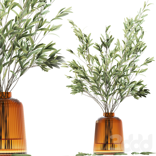 Olive stems in yellow glass vase with water