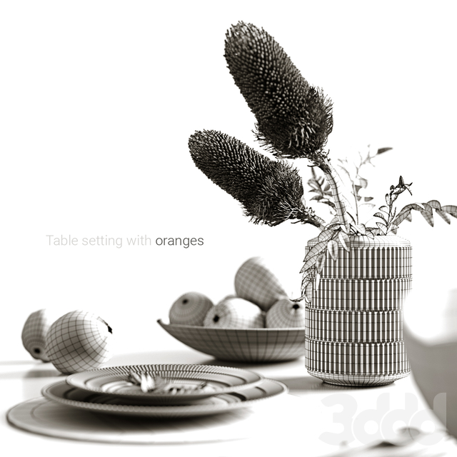 Table setting with oranges