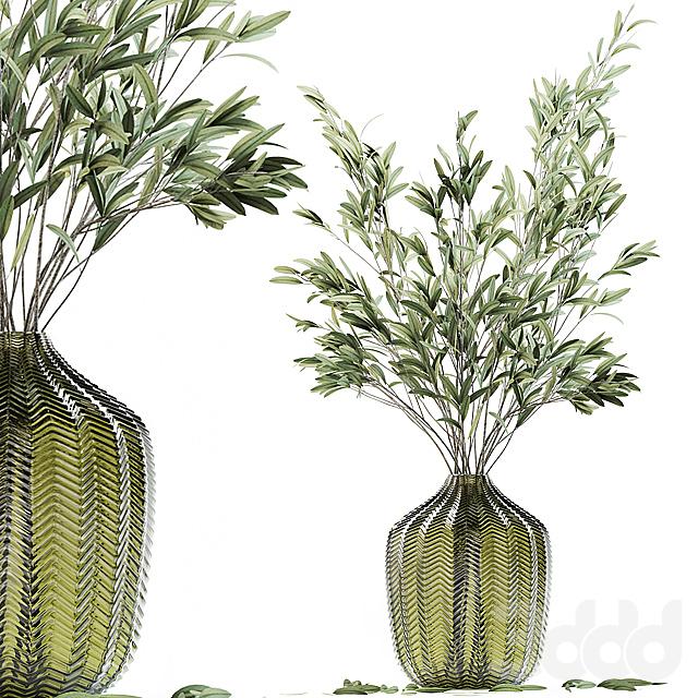 Olive stems in green glass vase