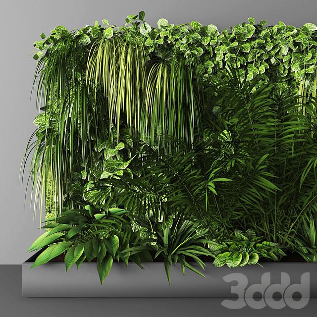 Vertical garden 065