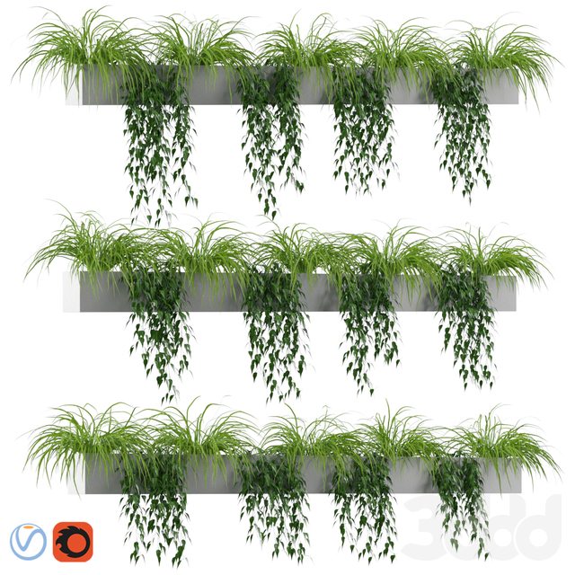 Plants in tubs v1
