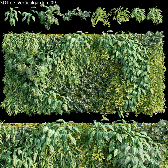 Verticalgarden - Green wall 09